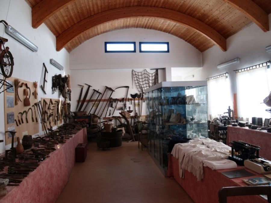 Museum Vischorum - Vische (TO)